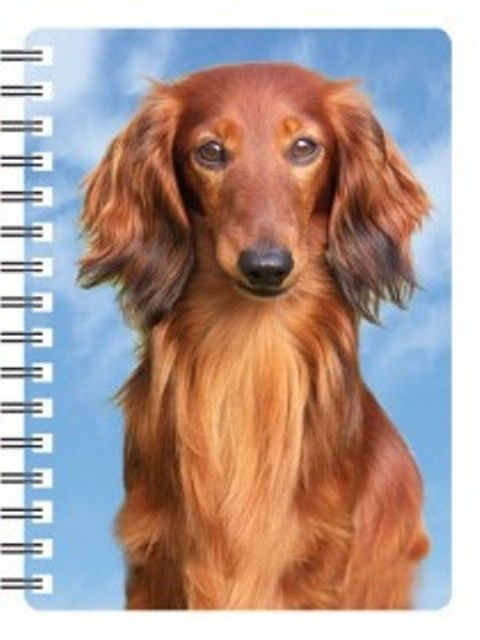 Dachshund 3D Notebook